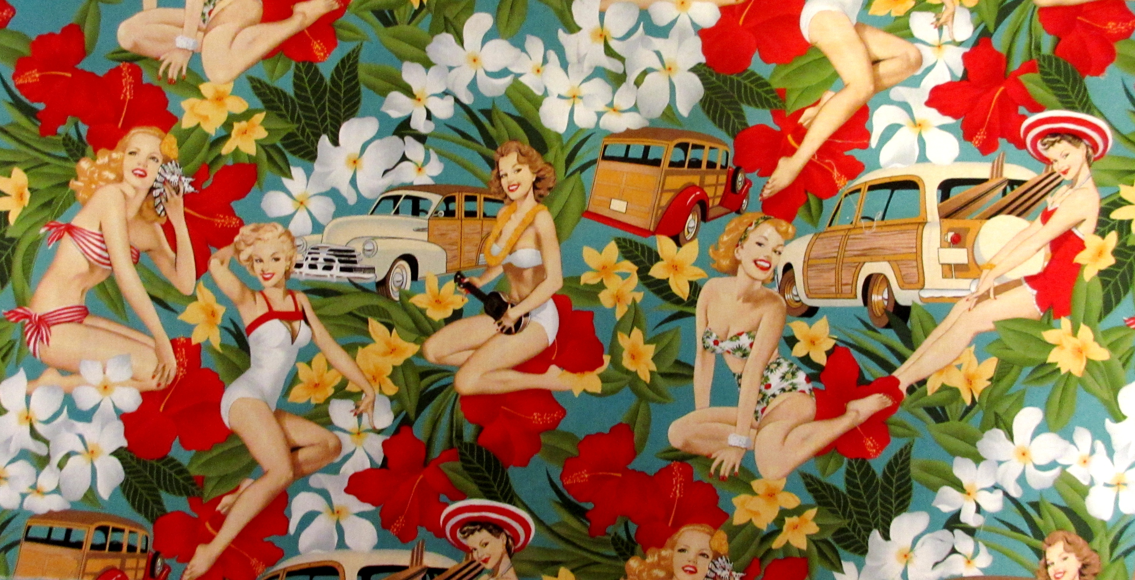 Pin up Fabric of Alexander Henry Pin up